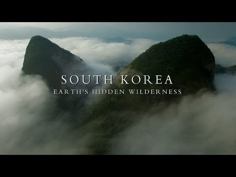 Photo of The Hidden Nature of Korea 🇰🇷 – BBC Documentary 2018 (1080p)