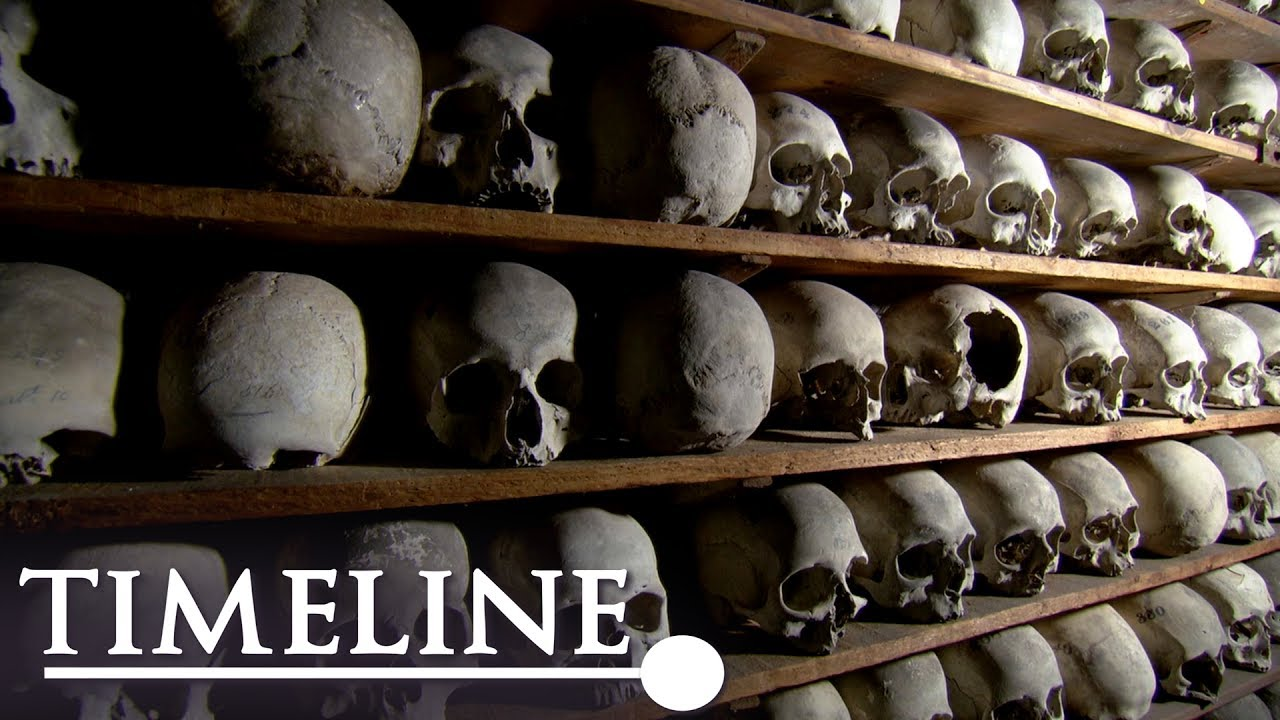 Photo of Vampire Island (Full Documentary) | Timeline
