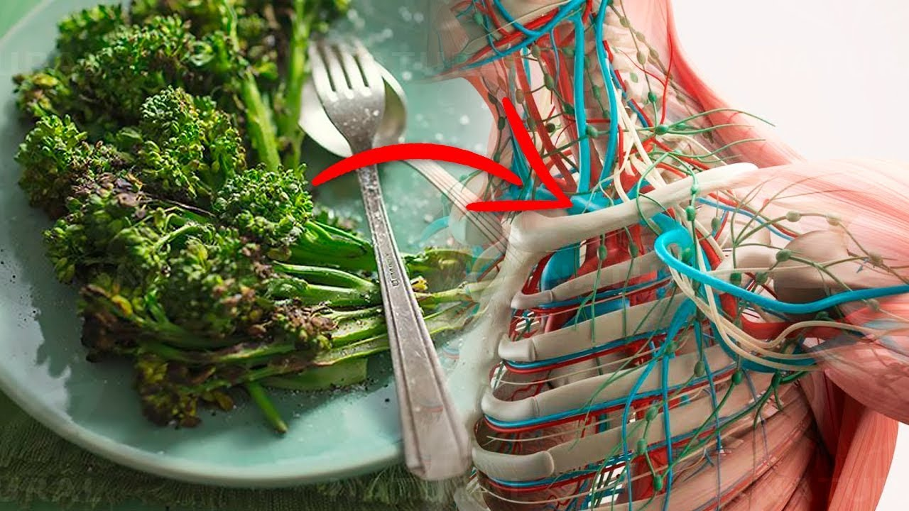 Photo of 8 Surprising Health Benefits of Eating Broccoli Every Day