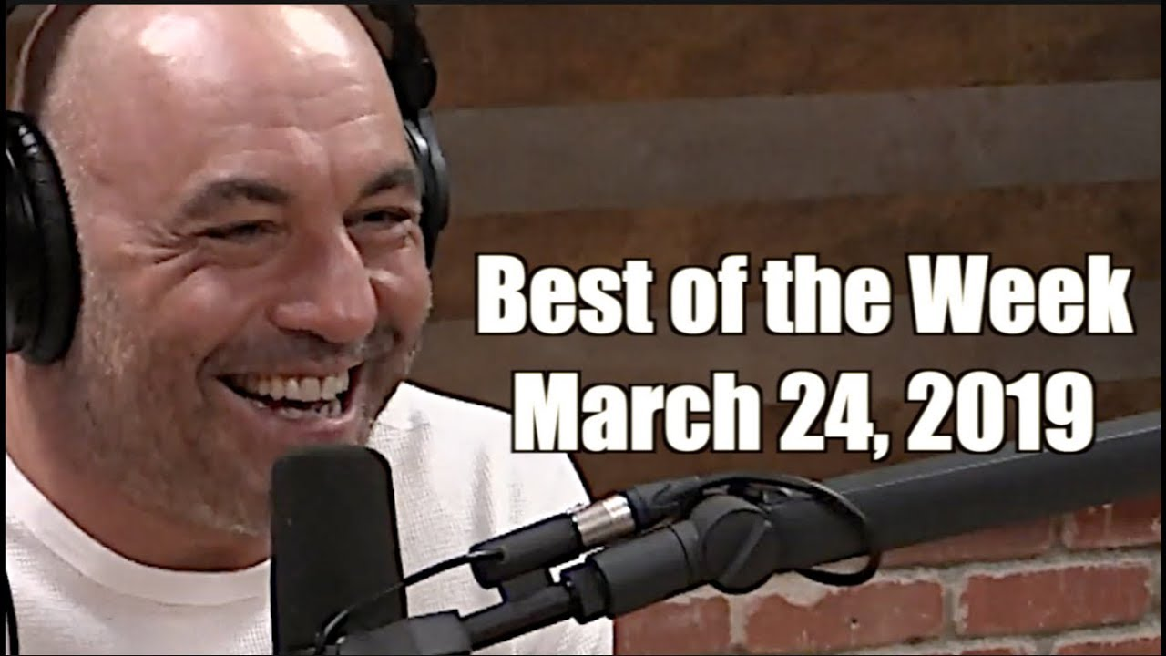 Photo of Best of the Week – March 24, 2019 – Joe Rogan Experience