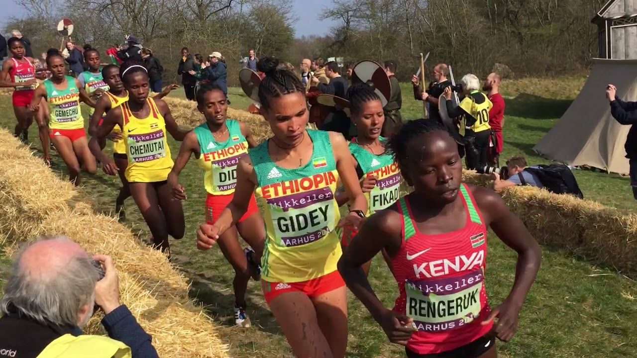 Photo of 2019 World Cross Country Championships