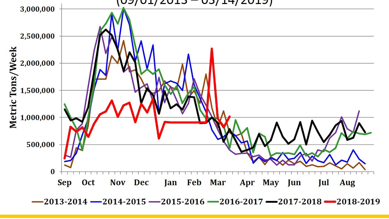 Photo of Soybean Marketing Updates | March 21, 2019, More Trade Developments
