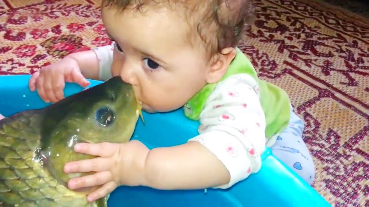 Photo of BABIES MEET FISH FOR THE FIRST TIME | Funny Babies And Animals Videos Compilation