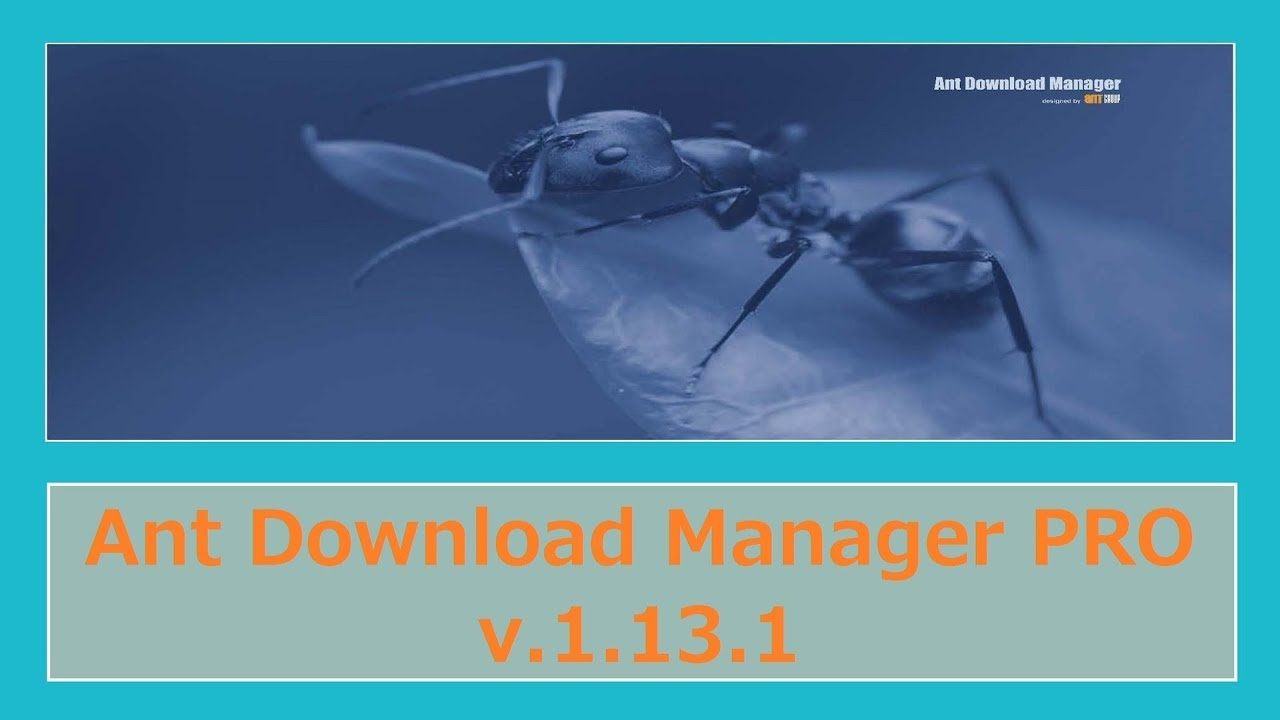Photo of Ant Download Manager PRO v.1.13.1 (日本語化)_NEW