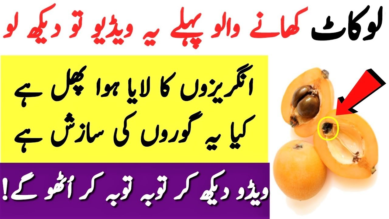 9 Amazing Benefits of Loquat Fruit and Nutritions Facts by Experts