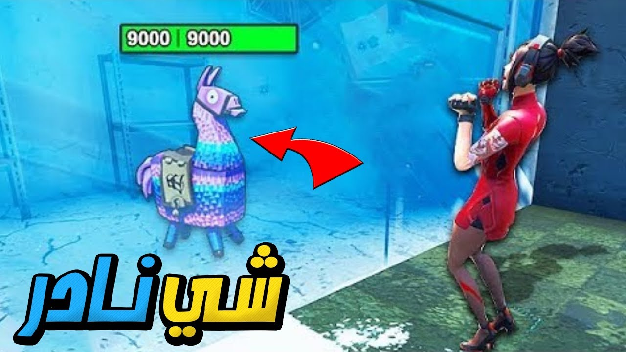 Photo of اندر لاما بتشوفها في فورت نايت 😱🔥 | FORTNITE