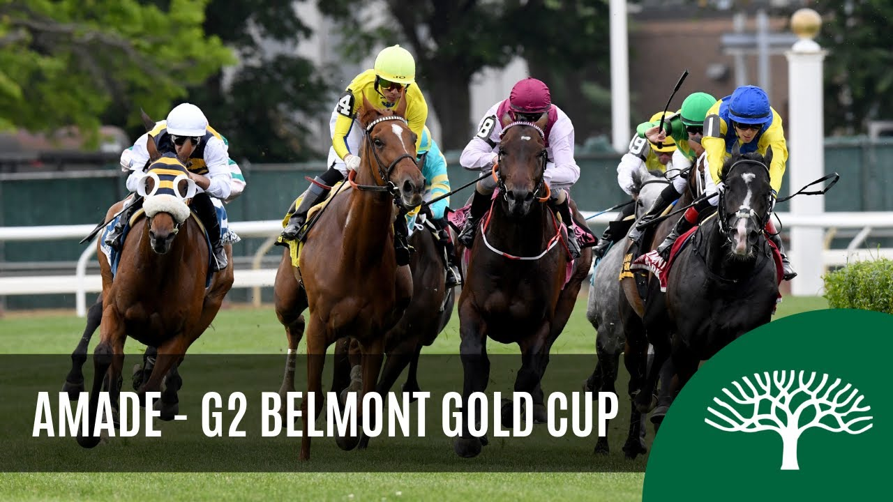 Amade – 2019 – The Belmont Gold Cup Invitational Stakes