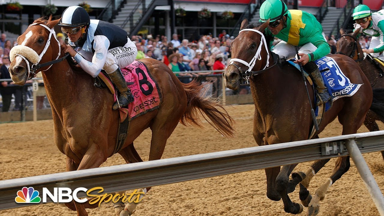 Photo of Black-Eyed Susan Stakes 2019 (FULL RACE) |  NBC Sports