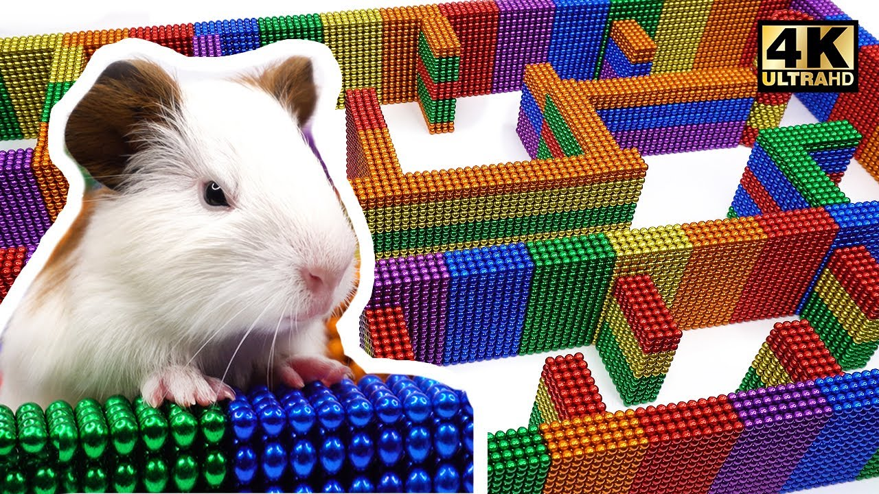 Photo of DIY – How To Build Amazing Maze Labyrinth For Pet Hamster from Magnetic Balls | Magnet World 4K
