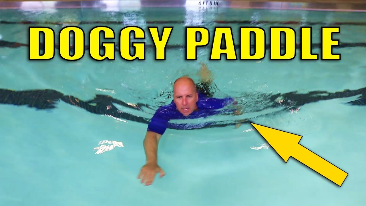 Photo of How to Doggy Paddle | Subscriber Request | Easy Dog Paddle Technique