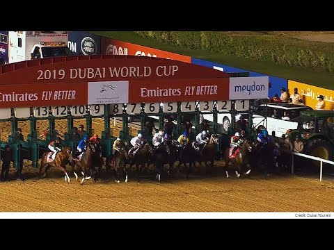 Photo of Dubai World Cup: the richest day in horse racing