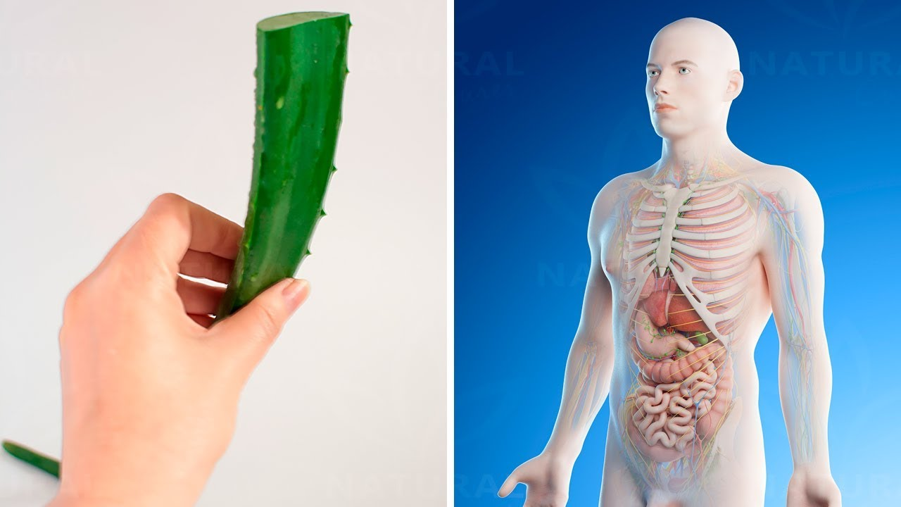 Photo of 7 Powerful Benefits of Aloe Vera for Men's Health