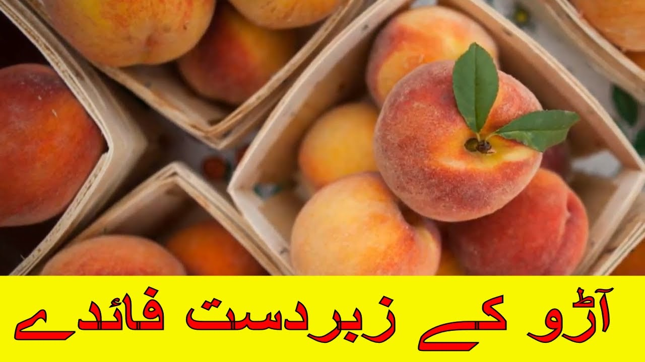 Photo of Aaro K Fayde Urdu – Hindi || Health Benefits Of Peach || آڑو کے فوائد