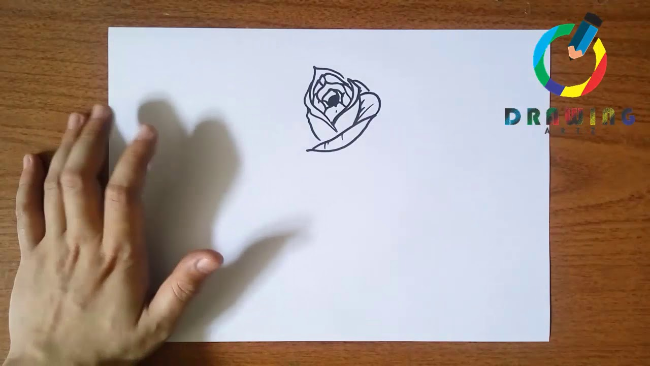 Photo of ✍️ How to Draw a Realistic Rose | كيفية رسم وردة واقعية | Cara Menggambar Bunga Mawar