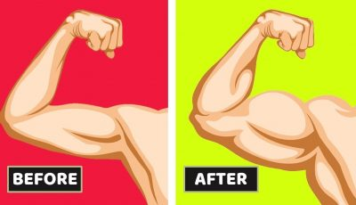 How to Build Muscle and Gain Healthy Weight Fast | HealthPedia
