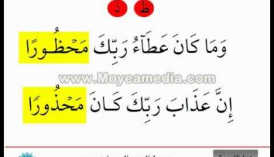 16/16 Tajweed in English –  The tongue makhraj ( ظ – ذ – ث )